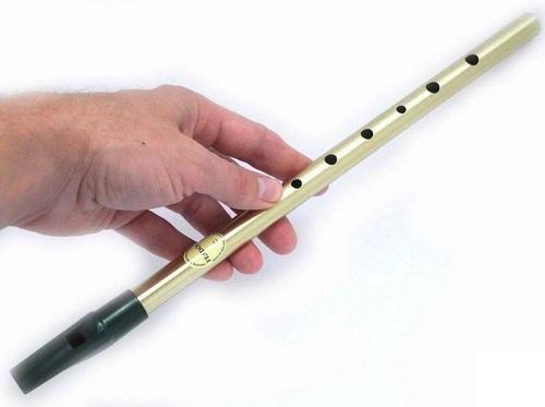 Flauta irlandesa