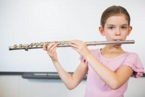 Flauta Travesera comprar